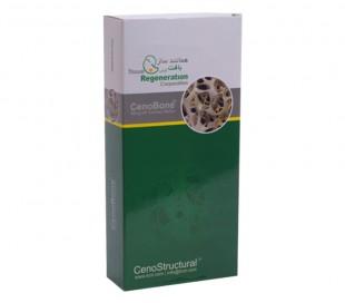 TRC - Demineralized Cortical Strut
