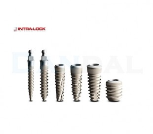Intra-Lock Implant