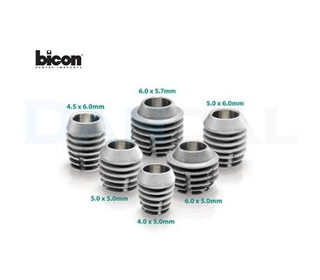 Bicon Implant