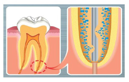ck dental